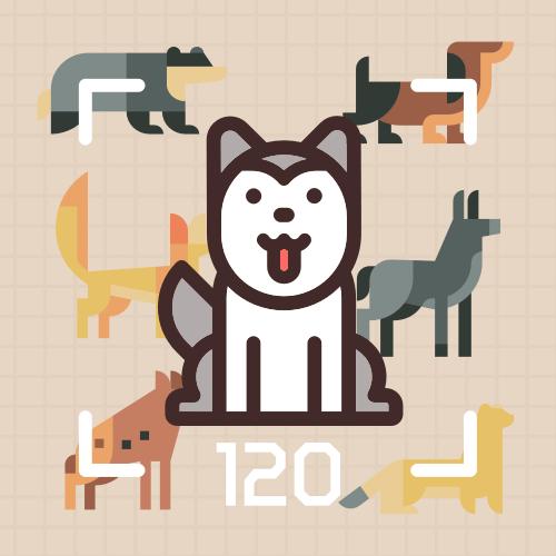 120种狗狗品种分类赛