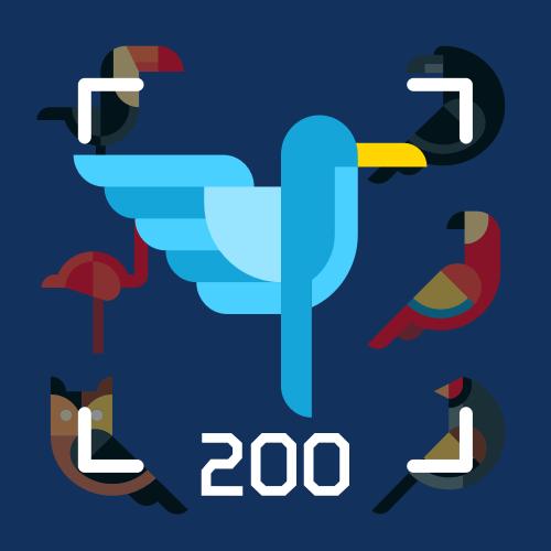 200种鸟类图像分类