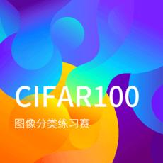 CIFAR100种图片分类练习赛