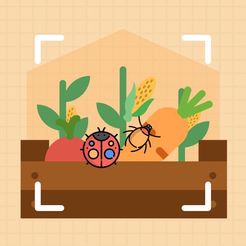 农作物病虫害检测